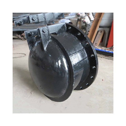 厂家直销防倒灌拍门 各种材质各种型号可定制