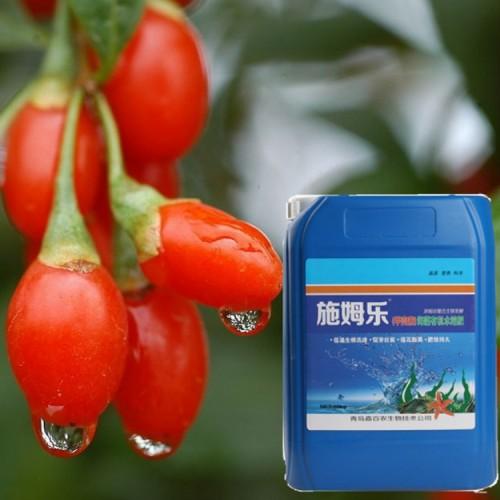 枸杞专用生根剂 施姆乐甲壳素海藻有机水溶肥10kg/桶