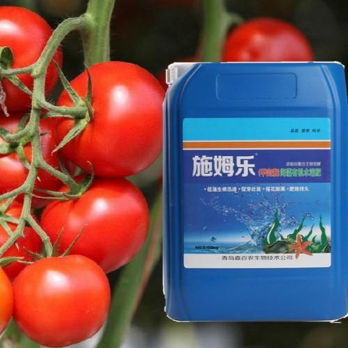甲壳素海藻有机水溶肥 小番茄专用生根剂10kg/桶