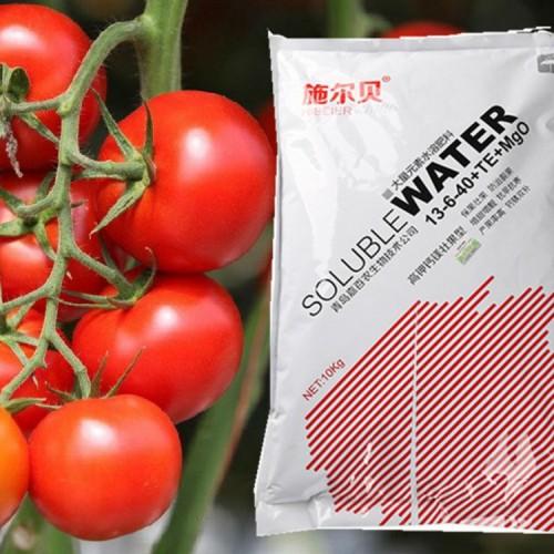 小番茄专用壮果型大量元素 施尔贝高钾壮果型大量元素