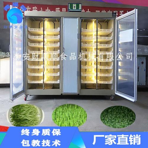 铜川大型芽苗菜培育机器