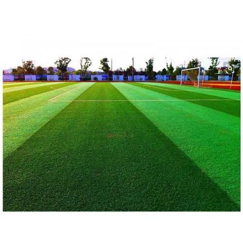 棒球场人造草坪