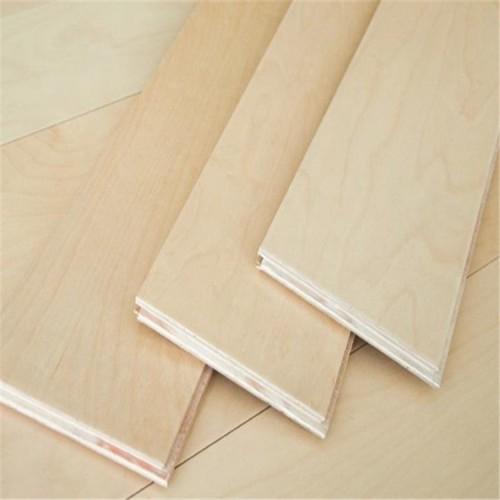 木地板 枫木运动木地板
