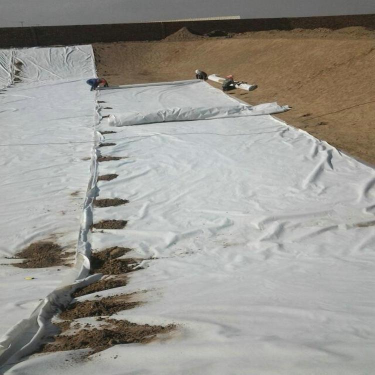 沉淀池防渗用1.0mmHDPE土工膜 0.40mmHDPE土工膜性能稳定