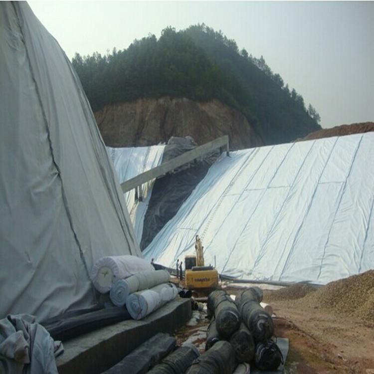 池州纳基膨润土防水毯技术指标 1.0mm土工膜精选厂家