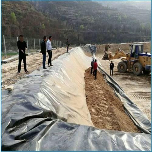 电厂原水调节池用1.5mmHDPE土工膜 0.9mmHDPE防渗膜性能稳定