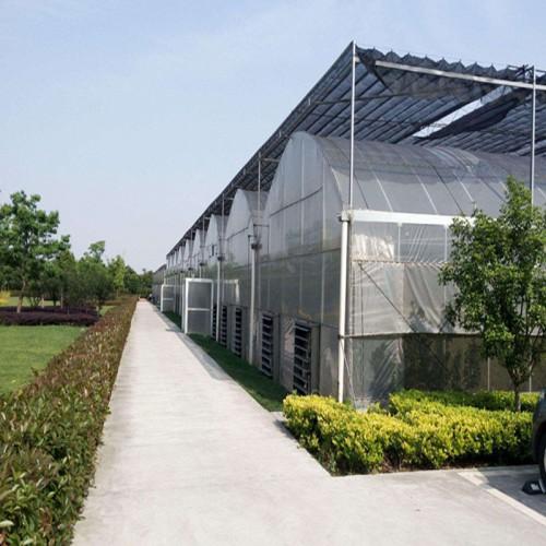 江苏薄膜温室大棚造价 薄膜温室结构特点 连栋薄膜温室承建商