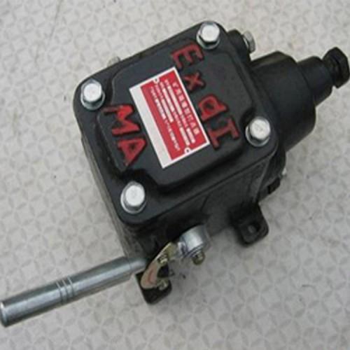 BAX矿用隔爆型打点器 BAX矿用隔爆型打点器厂家规格