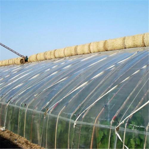 承接日光温室大棚 新型日光温室大棚建设 日光温室配件供应