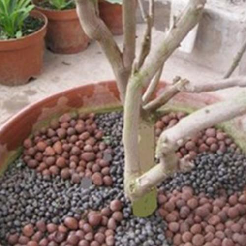 园林绿化陶粒 花卉园林陶粒 种植陶粒